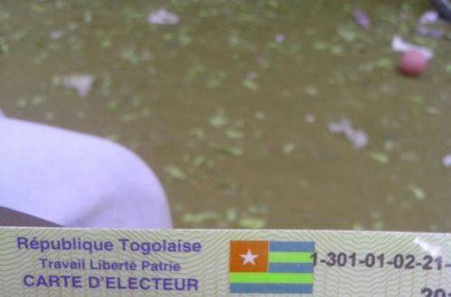 Article : Elections au Togo: Dans les loges du recensement